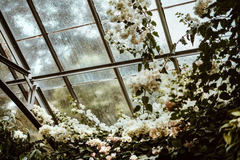 greenhouse-blossoms_925x@2x