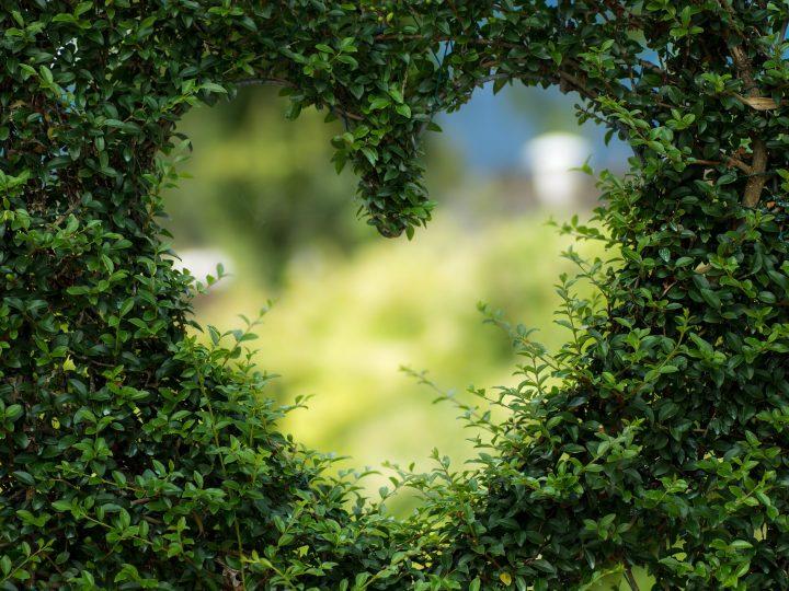 Láska je čin, nie iba pocit